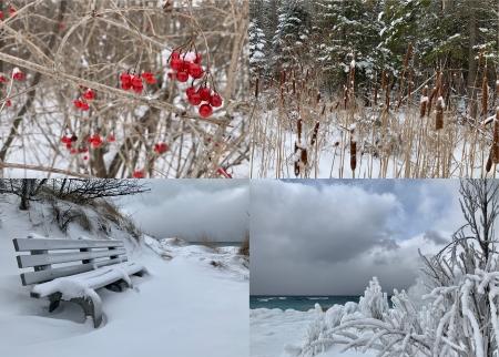 4 winter photos